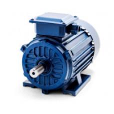 Электродвигатель АИP 100L2 IM1081 (5,5кВт/3000 об/мин)